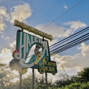 Top Things to Do In The North Shore Of Oahu (Haleiwa)